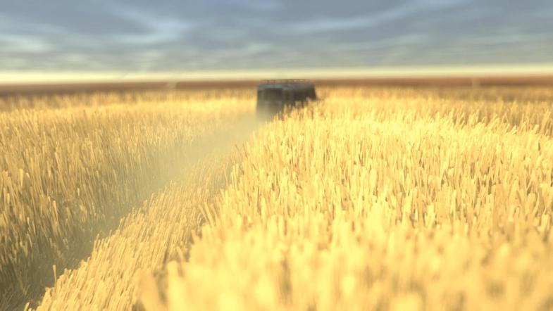 پکیج DirectX 11 Grass Shader