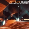 پکیج Amplify Bloom