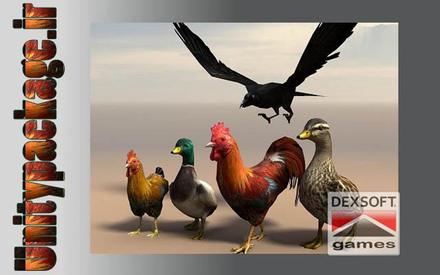 پکیج Birds