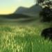 پکیج DirectX 11 Grass Shader