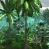 پکیج Natural Jungle Pack