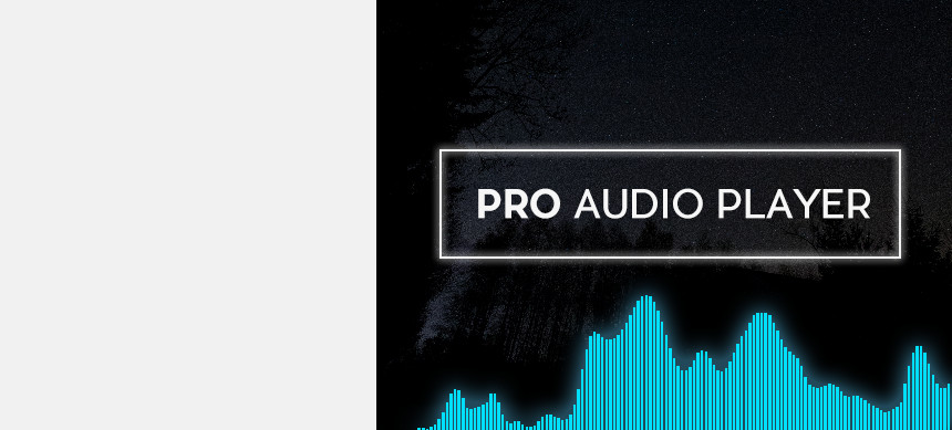 پکیج Pro Audio Player