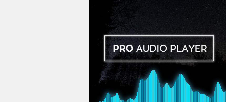 پکیج Pro Audio Player