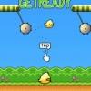 پکیج Swing Bird